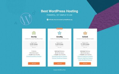 WordPress hosting for premium themes
